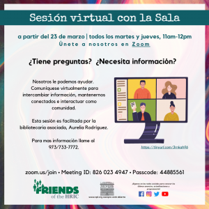 Sesión virtual con la Sala